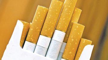 Tekel 2001 Güncel Sigara Fiyatları ve Fiyatı